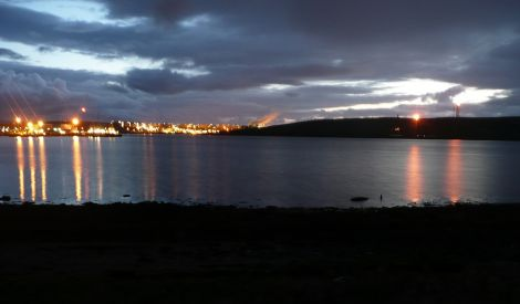 The whale shortly after it died in the early hours of Sunday morning while work continued round the clock in Sullom Voe, busy with the construction work for the new gas plant - Photo: Shetland News