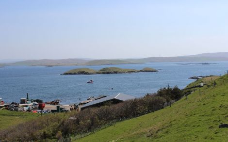 Hoganess salmon farm's Cloudin site where the illegal nets were set. Photo Shetland News