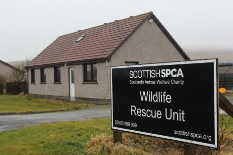 The wildlife rescue unit in Gott, which is due to close in February. Photo Shetnews