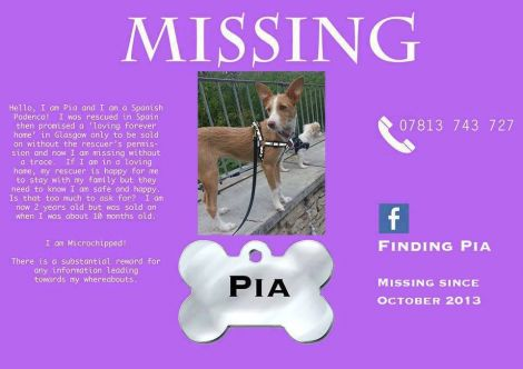missing pia