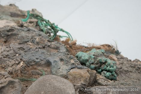 Plastic is weaving itself into the fabric of the earth - Photos: Austin Taylor