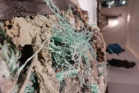 The installation makes a powerful point about the damage caused by plastic in the environment. Photo: Paul Bloomer