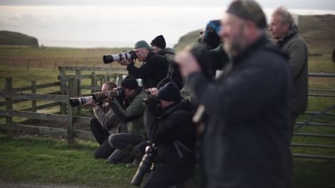 Birders gathered trying to capture photos of some of Fair Isles feathered migrant visitors. Photo courtesy of BBC Scotland.