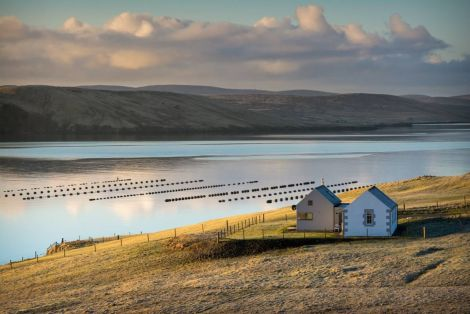 Several Muckle Roe residents have been beset with broadband problems this year. Photo: Brian Gray (www.briangrayphotography.com)