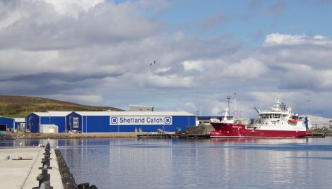 Pelagia Shetland's factory. Its Norway-based chief executive Egil Magne Haugstad is confident Brexit won't pose an issue - but not everyone in the local industry agrees. Photo: Shetland News/Hans J. Marter