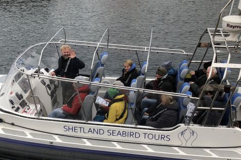 Shetland Seabird Tours are operating daily tours to Noss from Lerwick's Victoria Pier. Photo: Rebecca Nason/SST