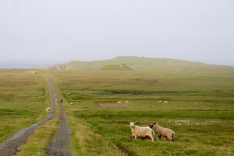 Lamba Ness could become a vertical launch site for small satellites. Photos: Chris Cope/Shetland News